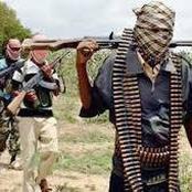 Insecurity: Boko Haram Kill 5 Persons, Abduct 30 Women in Adamawa Community