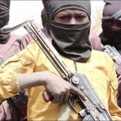 Boko Haram Groups Are Now Recruiting And Training Children