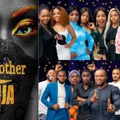 Who Do You Think Is The Most Successful Big Brother Naija 2020 Housemates?
