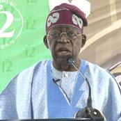"""Asiwaju Tinubu Is Medically Sound And Fit To Undertake Any National Assignments Whatsoever""- TSG"