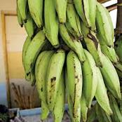 Five Health And Medicinal Benefits Of Plantain Peel That Will Make You Stop Throwing It Away