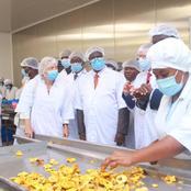 Mangues, Ananas, Bananes, Noix de coco : une usine de transformation ouverte à Bonoua