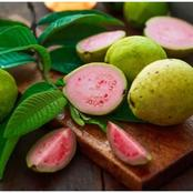 Benefits Of Eating Guava And Its Leaves