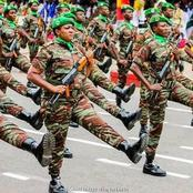 Beautiful Photos Of Nigeria And Benin Republic Armies On Parade