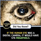 Check out this interesting and unbelievable facts