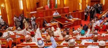 Senate Passes Bill Approving Single Tenure For Police Chief