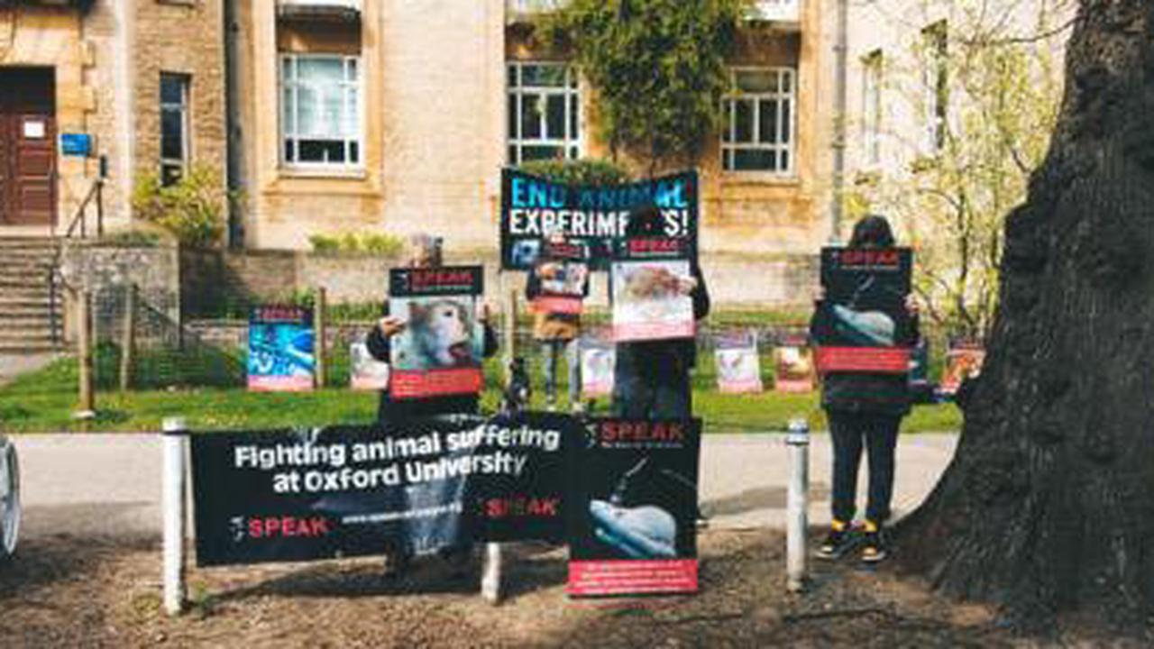 Animal rights protest at Oxford University lab