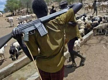 Consequences of the killing of the 15 people in Ebonyi State by suspected herdsmen