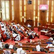 Senate Issues An Order To Security Operatives After The Killings In Ebonyi By Alleged Herdsmen