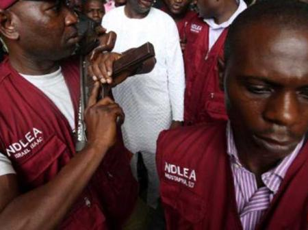 NDLEA Arrests Nigerian Musician For Being In Possession Of Cannabis