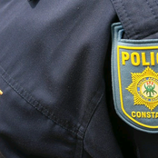 SAPS 'Struggling to Account' for Eight Million Pieces of Evidence