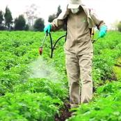 Pesticide Use and the Mechanisms for Chemical Resistance