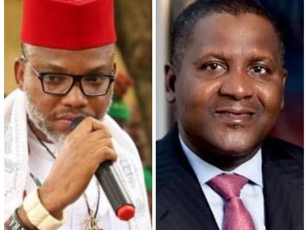 Is Nnamdi Kanu Jealous Of Dangote's Success? See What He Said About His Cement That Sparked Reactions