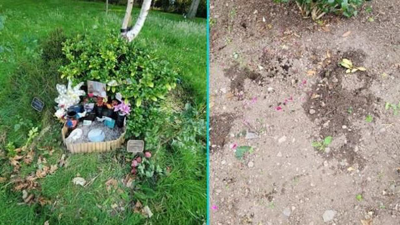 Mystery as family memorial disappears from crematorium and the council says it's not them