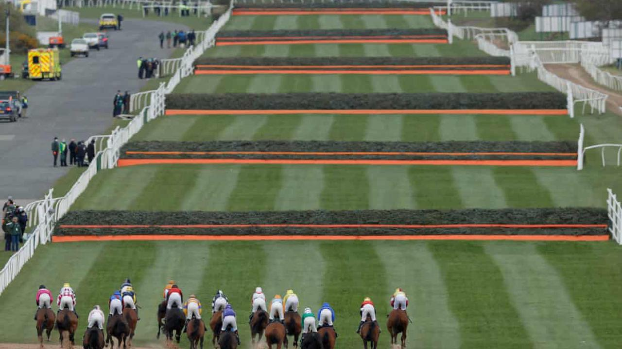 Talking Horses: Senior Citizen can triumph over Grand National fences