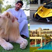Meet The Man Who Owns The Most Expensive Animals, Palaces And Cars In The World (Pictures)