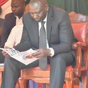Kiambu: Good News For Dp Ruto's 2022 Bid As Resident Says This About The Falling Of Mugumo tree