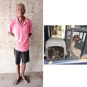 Man lands in trouble after asking his dogs to attack police operatives, injuring female inspector