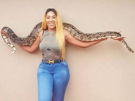 Check Out Photos of some Nigerian Celebrities playing with big snakes