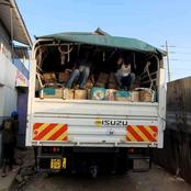 DCI Recovers Maize seeds Worth 7 million Stolen From Kenya Seed Narok Store