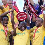 Mamelodi Sundowns fans request the subsequent star