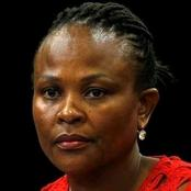 Independent panel report on public protectors was submitted to parliament.