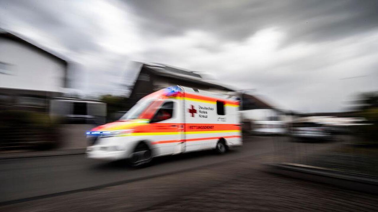 Transporterfahrer bei Kollision mit Baum schwer verletzt