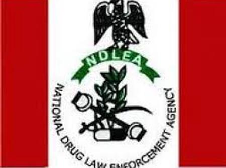 Recruitment: The NDLEA Shortlisted 5,000 Successful Applicants For Recruitment.