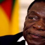'We would like to thank the American government for extending sanctions against Zanu' - OPINION
