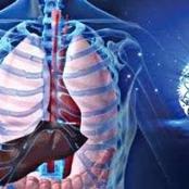 هذا ما سيحدث في جسمك بعد 30 يوماً من الصيام.. ورحلة جسم الإنسان خلال أيام الصيام بالتفصيل