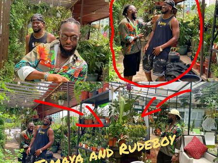 After Rudeboy And Timaya Was Spotted Looking For Apple In The Garden Of Eden, See What Fans Noticed