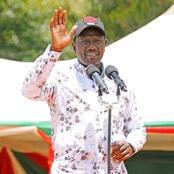 'Ni Mtu Ya Kitendawili Ama Husler ?' DP Ruto Asks Meru Residents As He Addresses A Rally