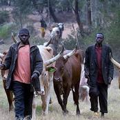 See what Bayelsa State government will do to any Fulani herdsman caught with AK-47