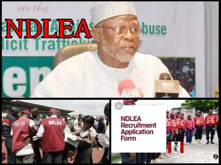 As NDLEA Releases Names Of Successful Candidates, Don't Appear On Screening Day Without These Documents