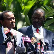 Raila Odinga Unveils a Grand Plan to Finish Kalonzo Musyoka Political Life