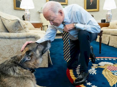Check Out The Kind Of Dog The US President Keeps As A Pet (Photos)