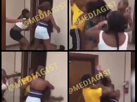 Several young ladies engage in fight because of one man (video)