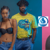 Who Takes Home Vodafone Most Popular Song Of The 22nd VGMA Night?