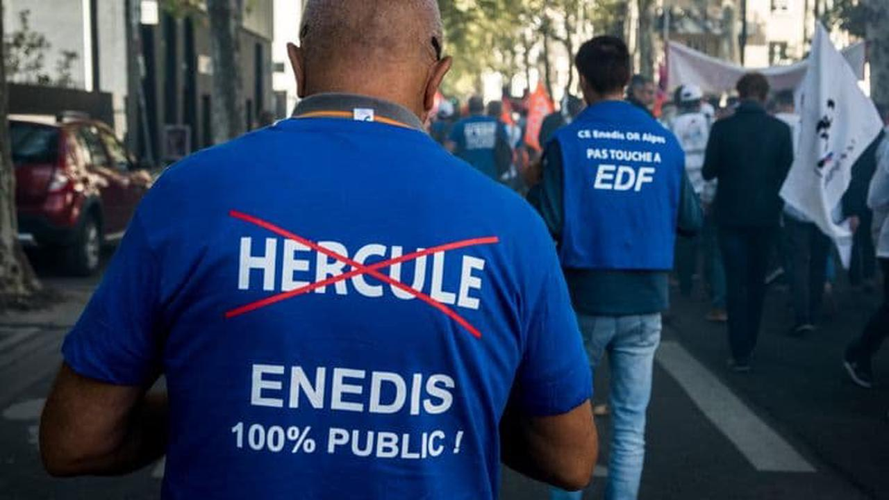 """EDF: le PDG regrette le report du projet Hercule, jugé """"indispensable"""" pour l'entreprise"""
