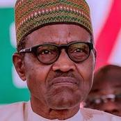 OPINION: Two Things President BUHARI Has Done That Nigerians Should Never Forget