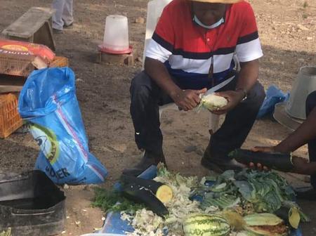 Former Speaker, Yakubu Dogara was sighted Peeling Cabbage in his farm [Photo]