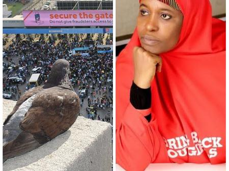 Aishat Yesufu Reacts After Pictures Of A Bird 'Viewing' EndSARS Protesters Surfaced Online