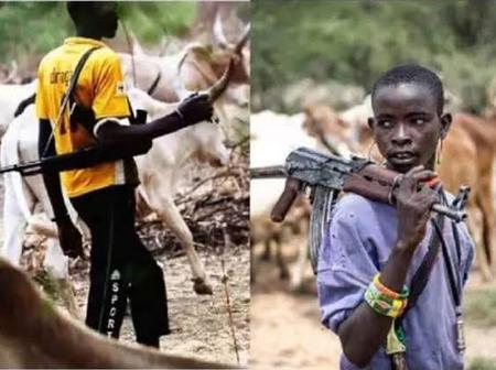 Weeks after Sunday Igboho Asked Them To Leave, Herdsmen Return to Igangan and Did This