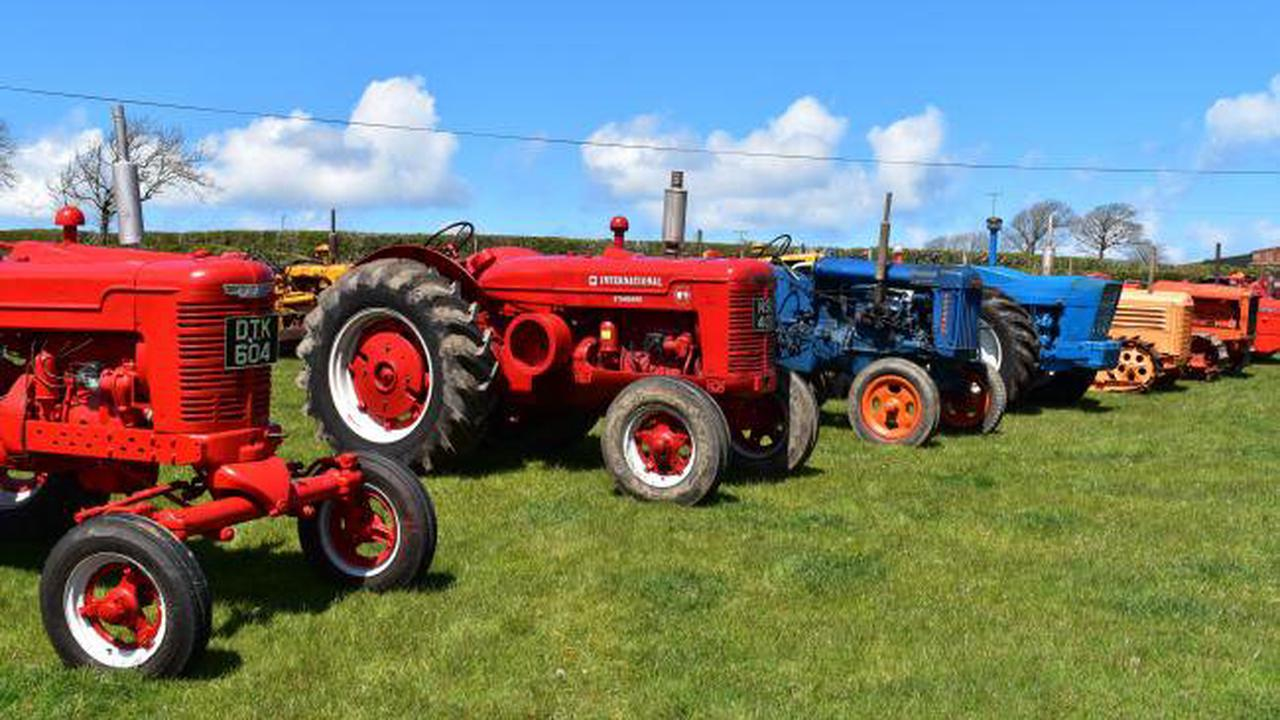 Eclectic collection of excellently maintained vintage tractors for sale near Bideford