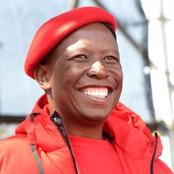 'Julius Malema must respect the fact that South Africa must have tight borders' - OPINION