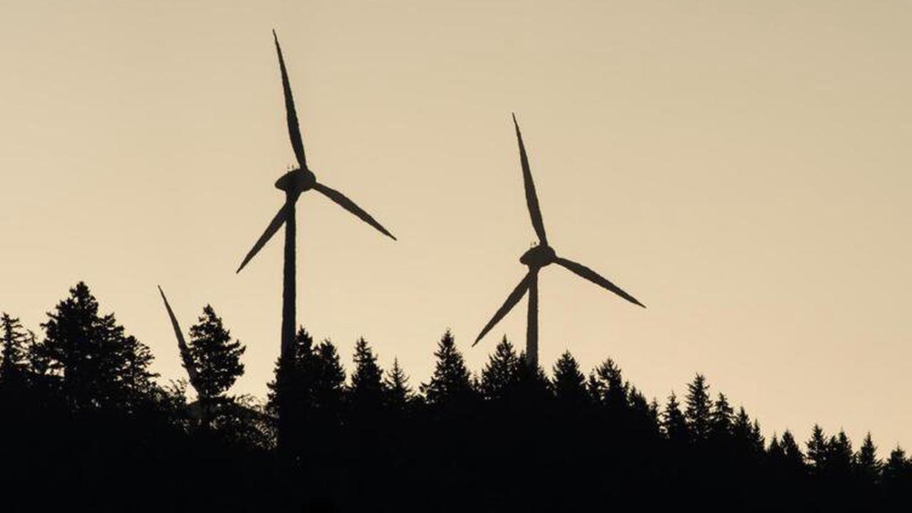 Windräder: Warum die Verbandsgemeinde Kriterien für mögliche Standorte festlegen will