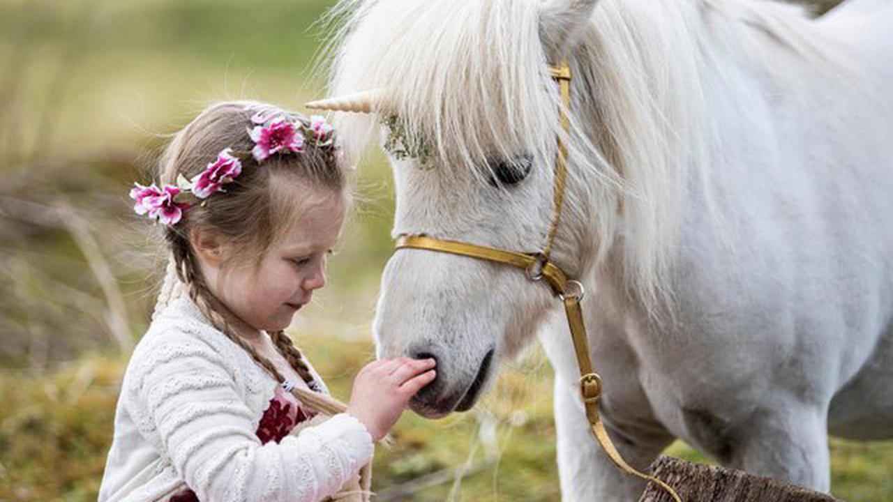 National Unicorn Day: Scotland's national animal toasted at mighty Stirling Castle