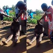 Watch:A woman caught flying to Duduza from Gasekororo village in limpopo to witchcraft see (video)