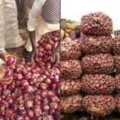 Check Out 3 Lessons Nigerian Should Learned From The Food Blockade To Southern Nigeria