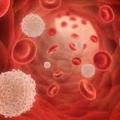 Blood Cancer Disease Kills: Stop Taking Too Much Of These 5 Things If You Want To Live Long